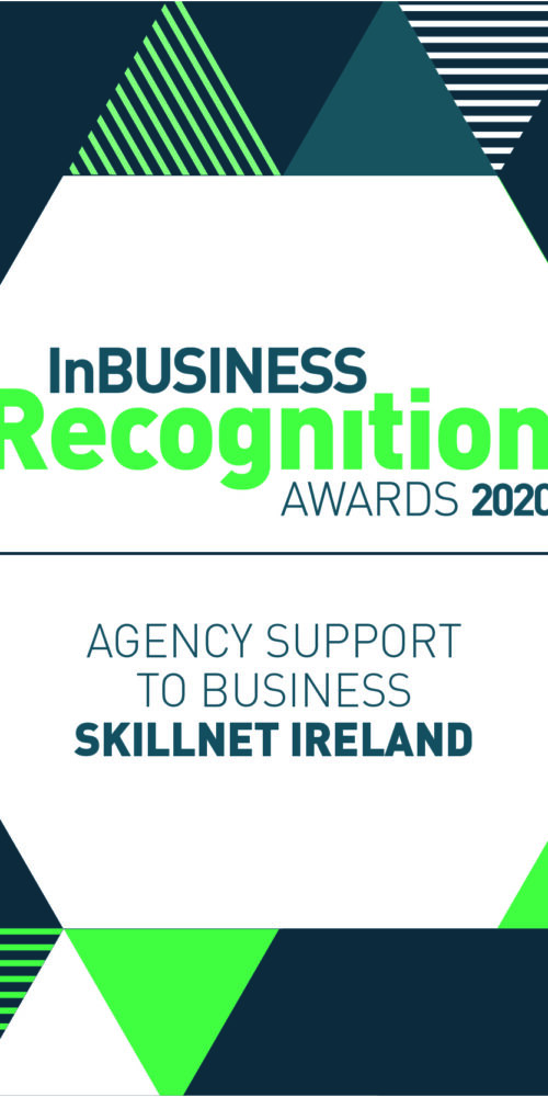 Skillnet Ireland wins award