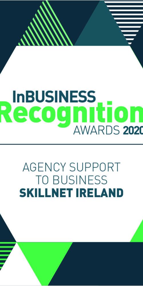 Skillnet Ireland wins award
